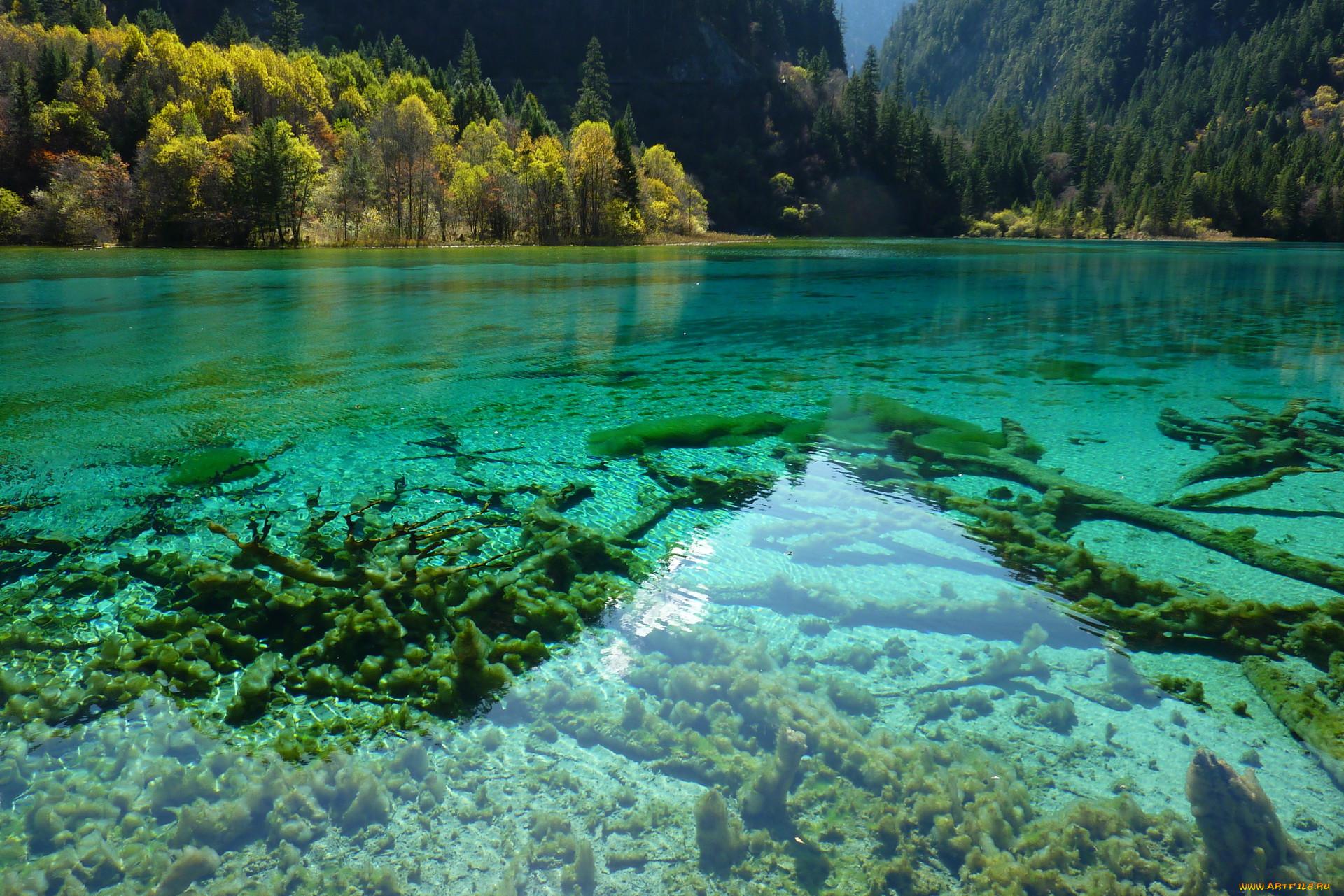 прозрачные реки и озера фото отметить
